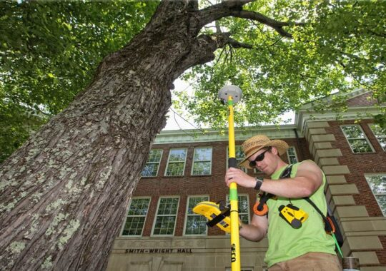 Arborist Consultations-Ruskin FL Tree Trimming and Stump Grinding Services-We Offer Tree Trimming Services, Tree Removal, Tree Pruning, Tree Cutting, Residential and Commercial Tree Trimming Services, Storm Damage, Emergency Tree Removal, Land Clearing, Tree Companies, Tree Care Service, Stump Grinding, and we're the Best Tree Trimming Company Near You Guaranteed!