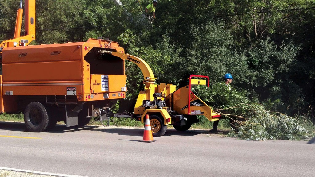 Commercial Tree Services-Ruskin FL Tree Trimming and Stump Grinding Services-We Offer Tree Trimming Services, Tree Removal, Tree Pruning, Tree Cutting, Residential and Commercial Tree Trimming Services, Storm Damage, Emergency Tree Removal, Land Clearing, Tree Companies, Tree Care Service, Stump Grinding, and we're the Best Tree Trimming Company Near You Guaranteed!