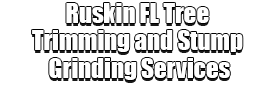 Ruskin FL Tree Trimming and Stump Grinding Services Logo-We Offer Tree Trimming Services, Tree Removal, Tree Pruning, Tree Cutting, Residential and Commercial Tree Trimming Services, Storm Damage, Emergency Tree Removal, Land Clearing, Tree Companies, Tree Care Service, Stump Grinding, and we're the Best Tree Trimming Company Near You Guaranteed!
