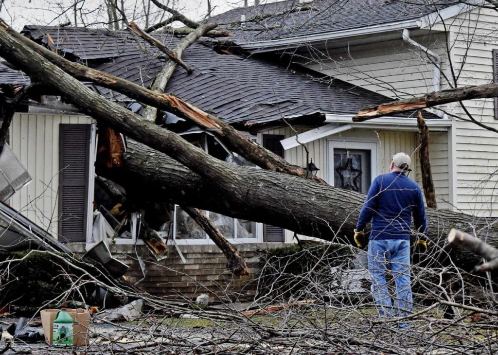 Storm Damage-Ruskin FL Tree Trimming and Stump Grinding Services-We Offer Tree Trimming Services, Tree Removal, Tree Pruning, Tree Cutting, Residential and Commercial Tree Trimming Services, Storm Damage, Emergency Tree Removal, Land Clearing, Tree Companies, Tree Care Service, Stump Grinding, and we're the Best Tree Trimming Company Near You Guaranteed!